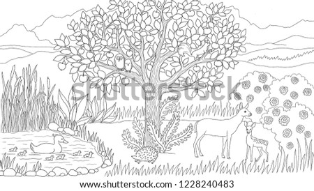 Meadow Nature Animals Illustration Coloring Page Stock Illustration