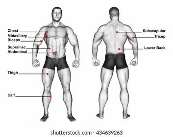 Measure Body Fat Percentage for man. 3D illustration