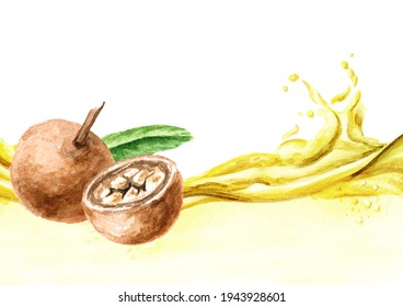 Medical Fruit Hydnocarpus anthelminthicus or Chaulmoogra and bottle of essential wave. Watercolor hand drawn illustration isolated on white background
