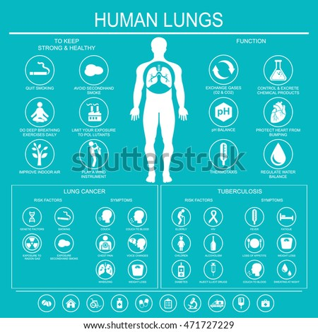Medical Infographics Lungs Function Health Lung Stock Illustration ...