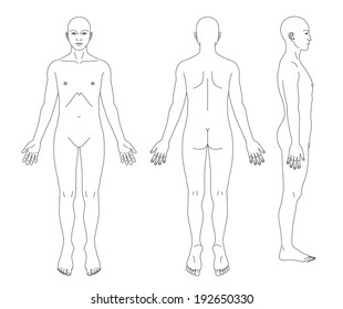 Medical record human body diagram (no sex)