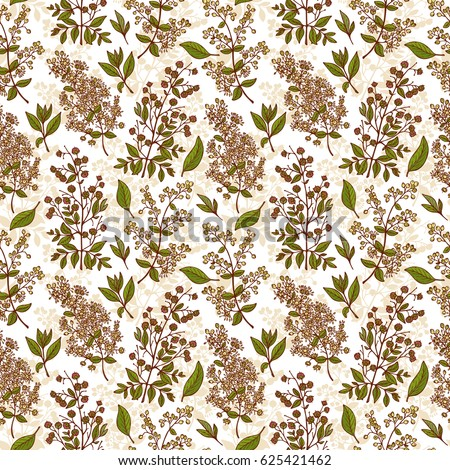 Medicinal Plants Seamless Pattern Henna Lawsonia Stock Illustration
