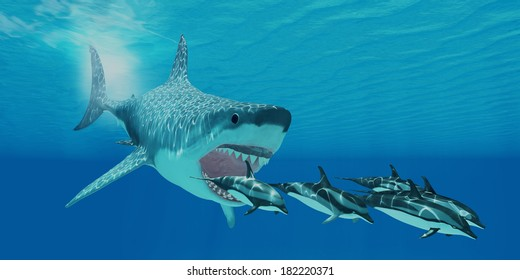 Megalodon shark images stock photos vectors shutterstock megalodon attack a huge megalodon shark swims after a pod of striped dolphins altavistaventures Image collections