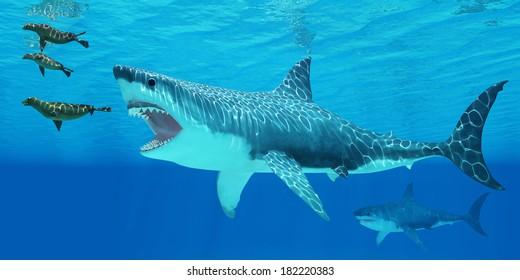 Megalodon Images, Stock Photos & Vectors | Shutterstock