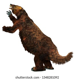 Megatherium Sloth Tail 3D illustration - Megatherium was a herbivorous Giant Ground Sloth that lived in Central and South America during the Pliocene and Pleistocene Periods.