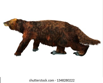 Megatherium Sloth Walking 3D illustration - Megatherium was a herbivorous Giant Ground Sloth that lived in Central and South America during the Pliocene and Pleistocene Periods.