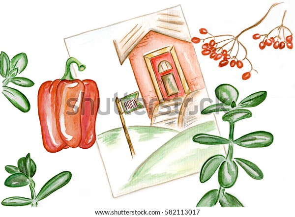 memories of home / watercolour sketch of the house, viburnum, household plants and pepper