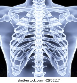 Men's chest X-rays under. 3d image.