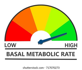 Metabolic rate indicator