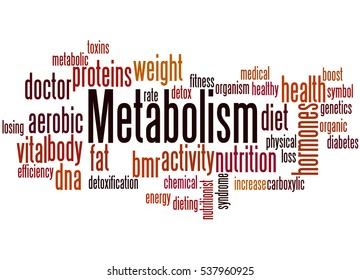 Metabolism, word cloud concept on white background.