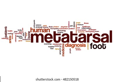 Metatarsal word cloud concept