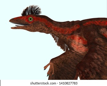 Microraptor Dinosaur Head 3D illustration - Microraptor was a carnivorous flying reptile that lived in China and Mongolia during the Cretaceous Period.