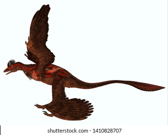 Microraptor Side Profile 3D illustration - Microraptor was a carnivorous flying reptile that lived in China and Mongolia during the Cretaceous Period.