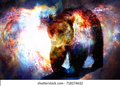 mighty bear in space. Photos and graphic effect. Computer collage.