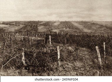 Miles of barbed wire forms a maze of twisted stands through which attacking troops must penetration. Both sides relied on artillery shelling to break up barriers. Western Front, ca. 1915-18.