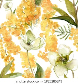 Mimosa and hellebore watercolor pattern for wallpapers and textile deisign. Spring painted flowers. Yellow acacia. Watercolour botanical illustration.