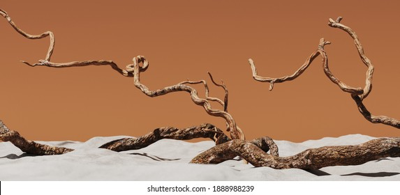 Minimal background for summer concept. Dry tree twigs and white sand beach on brown background. 3d rendering illustration. Clipping path of each element included.