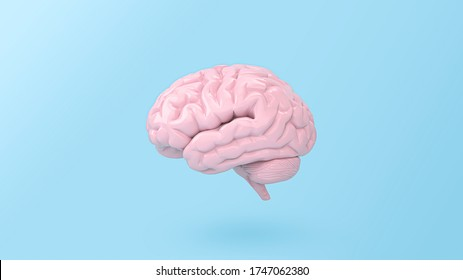 minimal pink brain in front view on blue background, thinking comic speech bubble. 3d rendering.