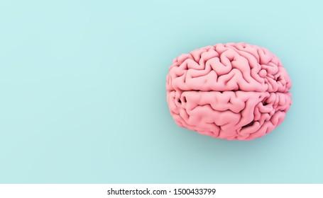 minimal pink brain on blue background 3d rendering