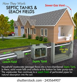 A minimal text infographic of a contemporary septic tank system. The image depicts a process that begins with a flushing toilet and flows to an underground system for the diffusion of sanitary waste.