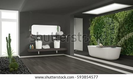 Minimalist gray bathroom vertical succulent garden stock