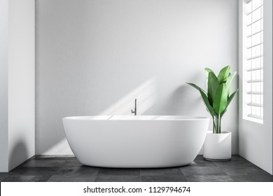 Minimalistic bathroom interior with white walls, a tiled black floor, and a white bathtub with a potted plant standing near it. Scandinavian style. 3d rendering mock up