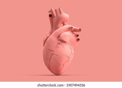 Minimalistic illustration of human heart on pink background. 3D illustration