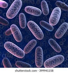 Mitochondria 3d illustration