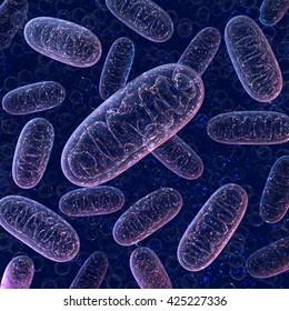Mitochondria on a dark blue background. 3d illustration