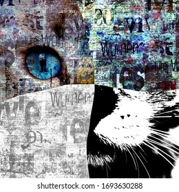 Mixed media art collage. Close up view of cat with green eyes. Cut portrait on newspaper paper print grunge texture background. Pets and lifestyle concept. Space for text. Close-up.