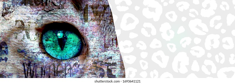 Mixed media art collage. Close up view of cat with green eyes. Cut portrait on black and white leopard print hand painted and newspaper paper print texture background. Pets and lifestyle concept.
