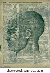 Mixed medium collage phrenology head and antique dictionary page.
