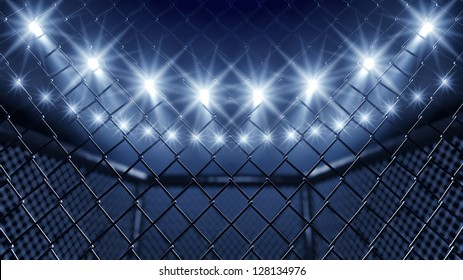 MMA cage fight