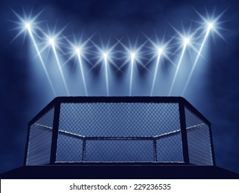 MMA cage , Mixed Martial arts fight