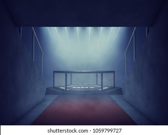 MMA fight cage lit by spotlights, Mixed martial arts arena entrance, 3d illustration