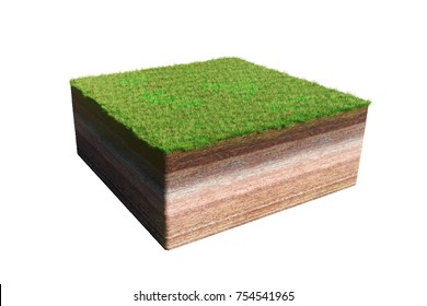 model of a cross section of ground with grass (3d illustration, isolated on white background)