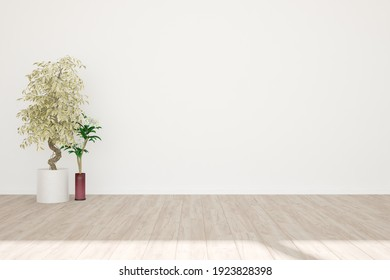 modern empty room with plants in pots interior design. 3D illustration