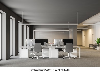 Modern grey office interior with rows of white computer desks and loft windows. Gray carpet with sofas and plants. International company concept 3d rendering copy space