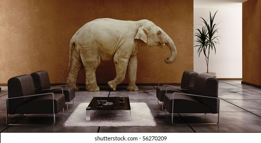 modern interior with elephant inside (3D rendering)