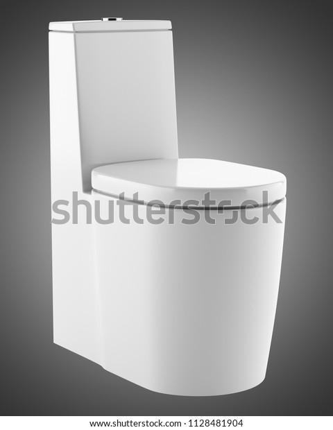 Surprising Modern Standing Toilet Bowl Isolated On Stock Illustration Creativecarmelina Interior Chair Design Creativecarmelinacom