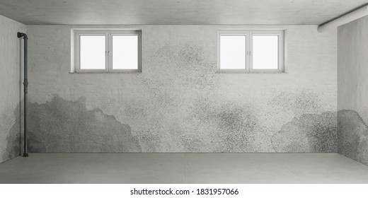 Mold and moisture after water damage in the basement of a house (3d rendering)