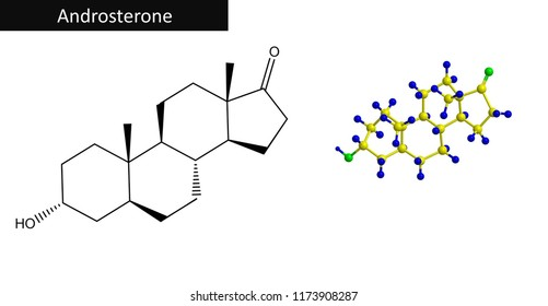 Molecular structure of Androsterone - endogenous steroid hormone, neurosteroid, and pheromone, 3D rendering