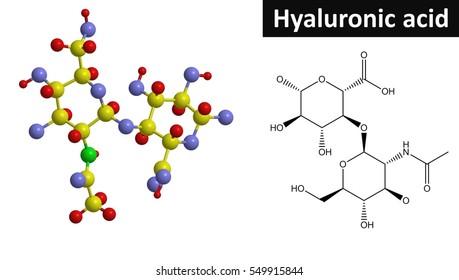 Molecular structure of Hyaluronic acid (hyaluronan), 3D rendering