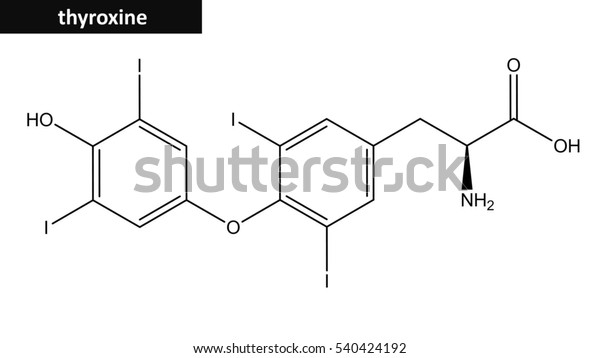 Molecular Structure Thyroxine Compound Belogns Family Stock