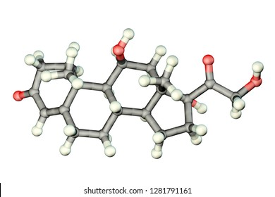 Molecule of cortisol hormone, 3D illustration. Cortisol is a steroid hormone of glucocoticoid class made in the cortex of adrenal glands. Used as medication it is called hydrocortisone