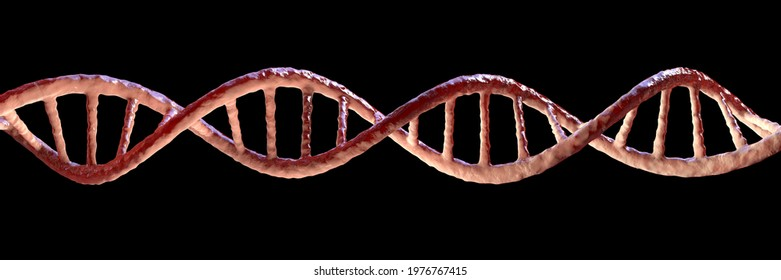 Molecule of DNA isolated on black background, double helix, 3D illustration. Gene therapy, genetic mutation and genetic disorders