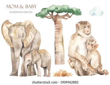 Mom and baby Africa elephants, monkeys, baobab, cloud, dry grass. Watercolor hand drawn clipart