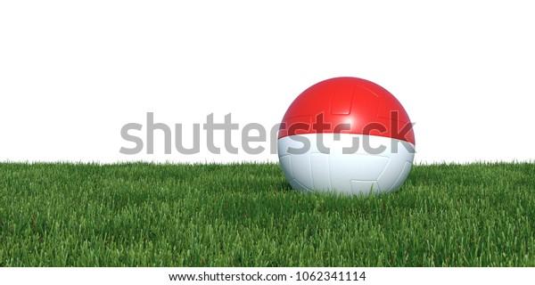 Monaco flag soccer ball lying in grass, isolated on white background. 3D Rendering, Illustration.