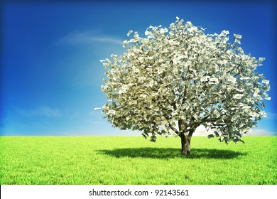 Money tree concept with room for text , or copy space