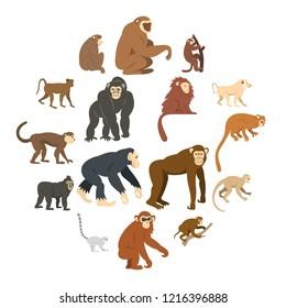 Monkey types icons set in flat style isolated illustration